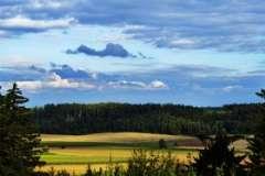 Горы Воронежской области - какие они? Часть 4